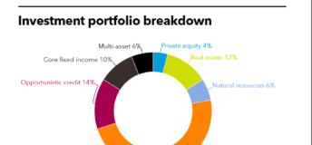 LSERS investment portfolio