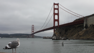 San Francisco Performance